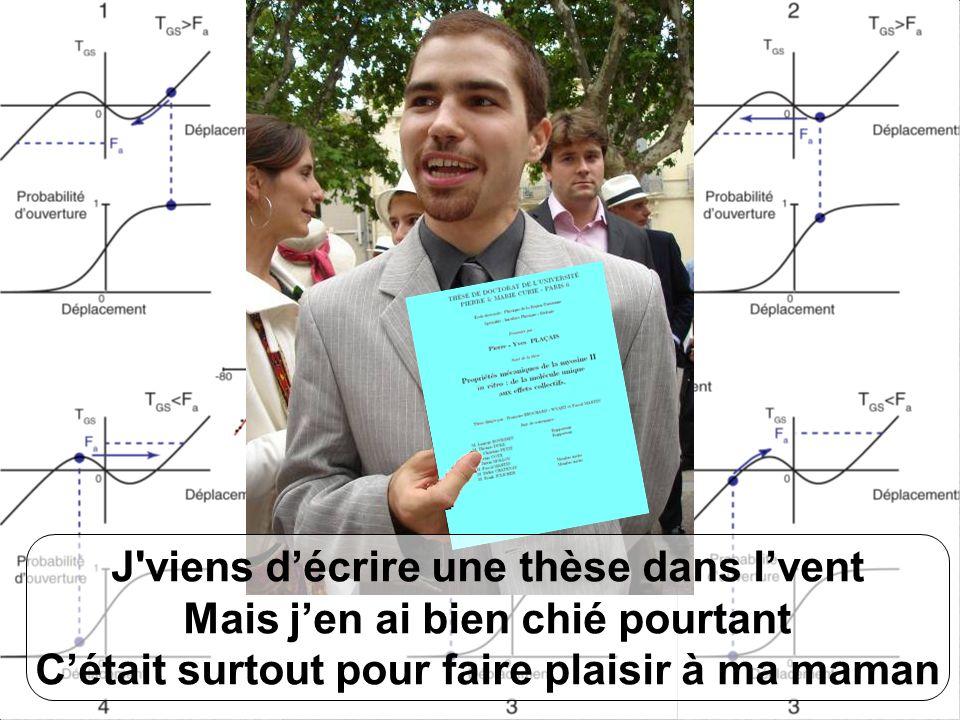 Its from P.Y.Plaçais . Great, thanks . Pierre-Yves Plaçais Bien sûr .