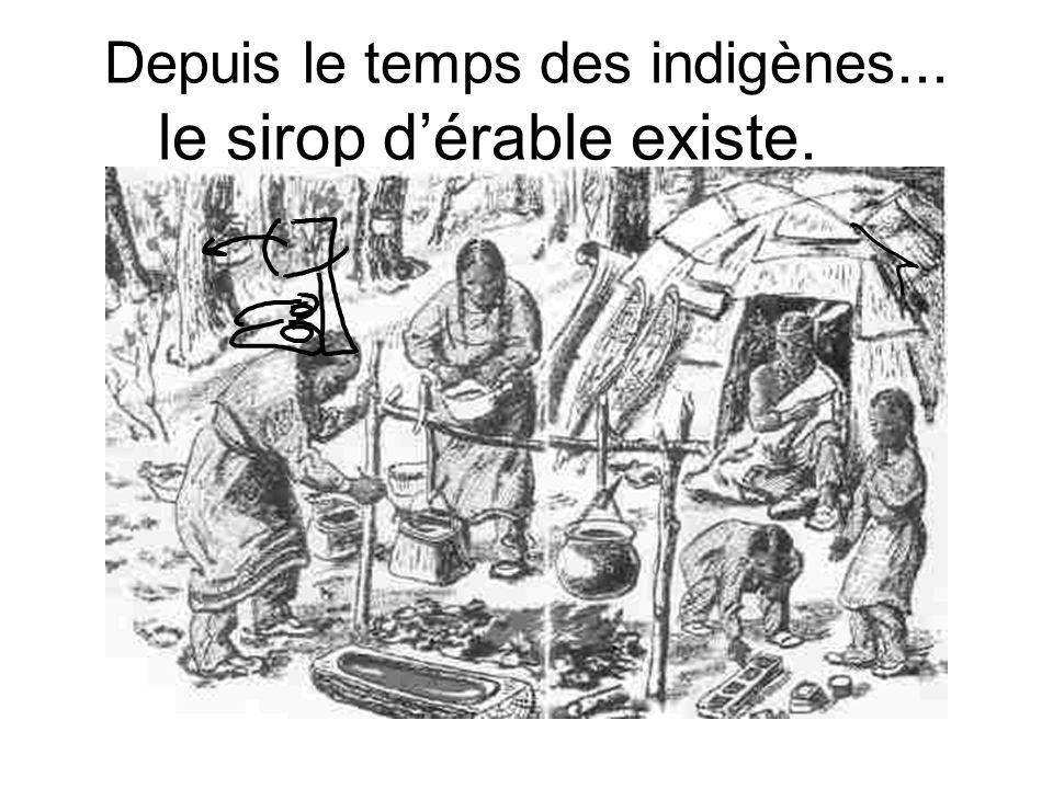 Depuis le temps des indigènes... le sirop dérable existe.