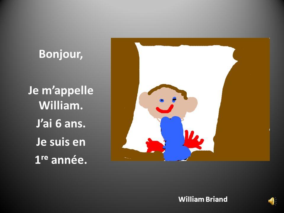 Seth Mailloux Bonjour, Je mappelle Seth.Jai 6 ans.