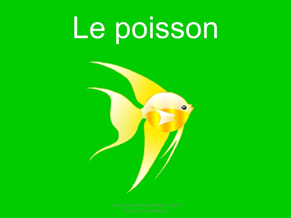 Le poisson Marie-France Bougie Masse | 2010 http://moncartable.ca