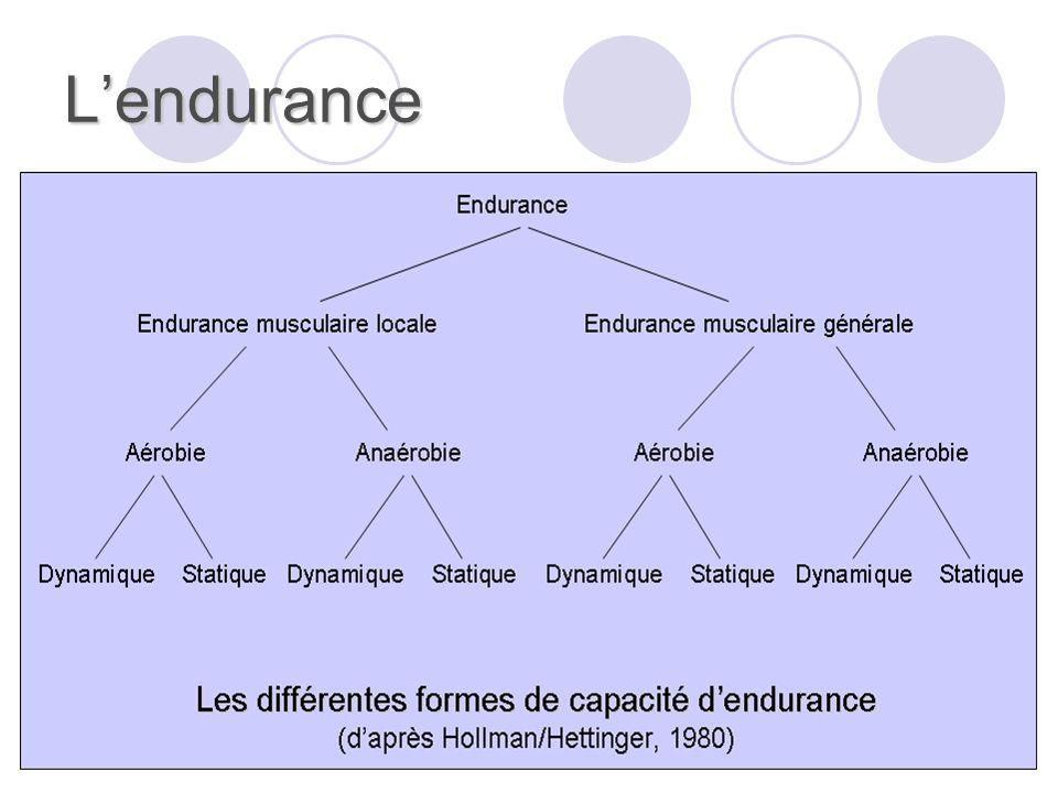 Lendurance Il est possible de distinguer : Selon la masse musculaire : lendurance locale (moins de 1/7 e de tous les muscles) et lendurance générale ou globale (plus de 1/7 e de tous les muscles).