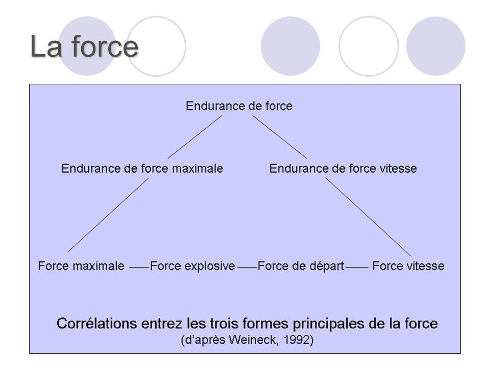 La force Il est possible de distinguer : Selon la masse musculaire : la force localisée et la force générale. Selon le mode de travail musculaire : la
