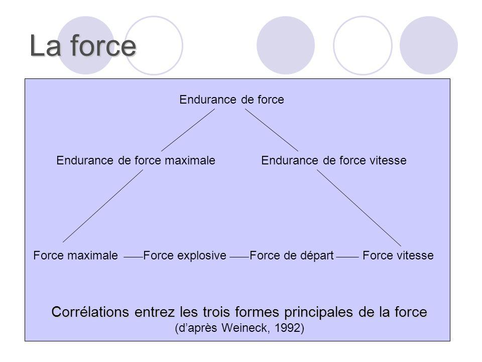 La force Remarque Remarque : la force napparaît jamais, dans les différents sports, sous une forme abstraite « pure », mais par une combinaison, plus ou moins nuancée, dun mélange de facteurs physique qui conditionnent la performance.