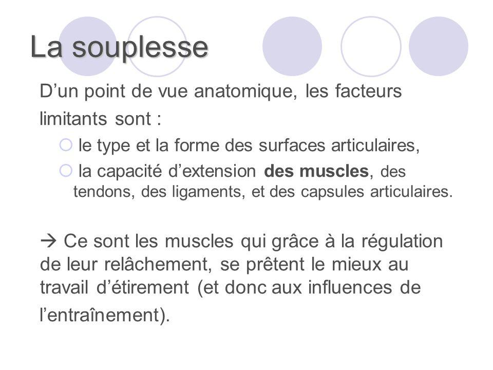 La souplesse Dun point de vue anatomique, les facteurs limitants sont : le type et la forme des surfaces articulaires, la capacité dextension des muscles, des tendons, des ligaments, et des capsules articulaires.