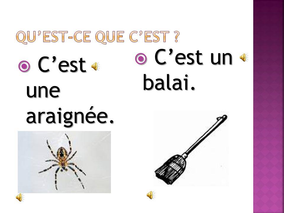 Cest une araignée. Cest une araignée. Cest un balai. Cest un balai.