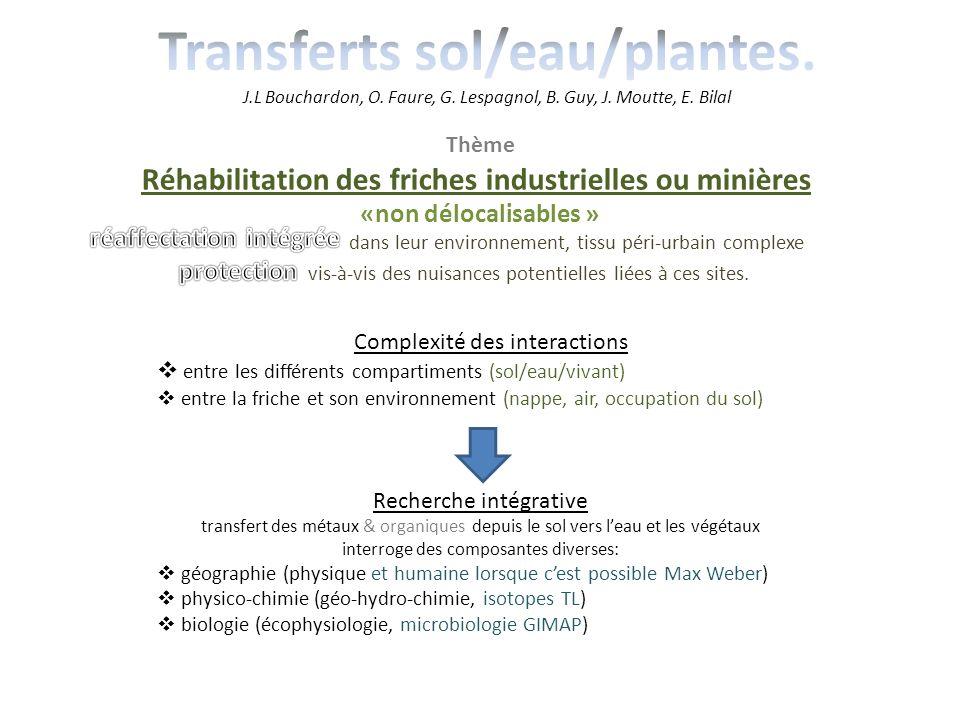 Thème Réhabilitation des friches industrielles ou minières «non délocalisables » dans leur environnement, tissu péri-urbain complexe vis-à-vis des nui