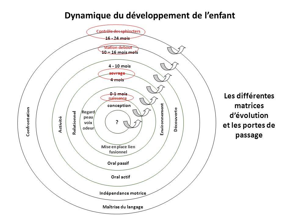 Les différentes matrices dévolution et les portes de passage Dynamique du développement de lenfant ? conception 0-1 mois 4 mois 4 - 10 mois 10 – 16 mo