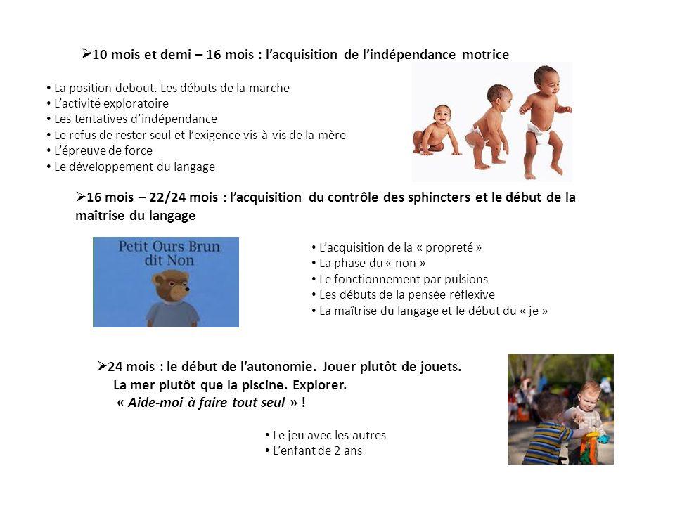 10 mois et demi – 16 mois : lacquisition de lindépendance motrice La position debout. Les débuts de la marche Lactivité exploratoire Les tentatives di