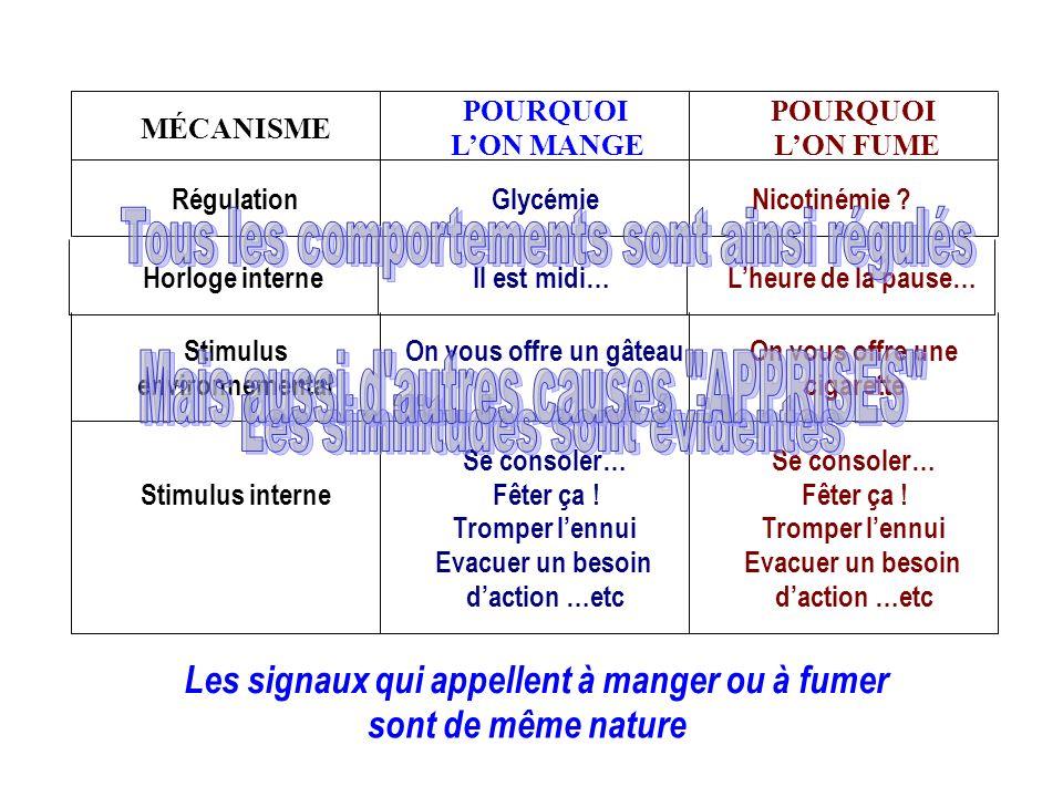 MÉCANISME POURQUOI LON MANGE POURQUOI LON FUME RégulationGlycémieNicotinémie ? Horloge interneIl est midi…Lheure de la pause…Stimulus environnemental