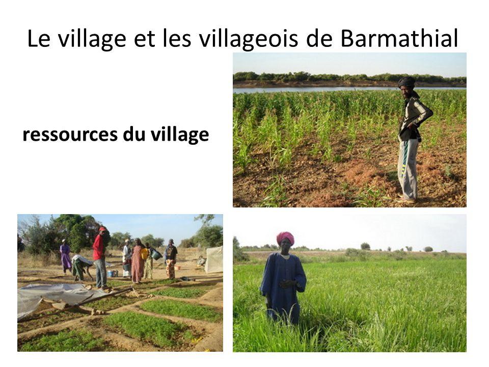 ressources du village Le village et les villageois de Barmathial