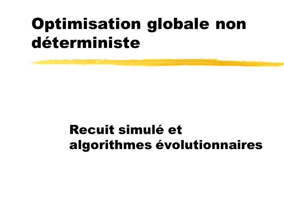Optimisation globale non déterministe Recuit simulé et algorithmes évolutionnaires