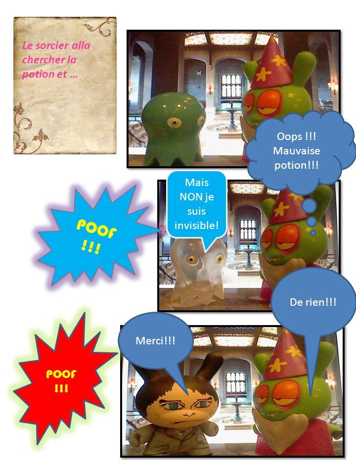 POOF !!! Le sorcier alla chercher la potion et … Mais NON je suis invisible! Oops !!! Mauvaise potion!!! Merci!!! De rien!!!