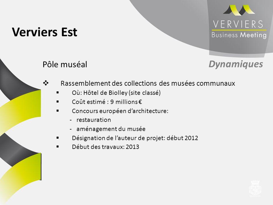 Pôle muséal Dynamiques Rassemblement des collections des musées communaux Où: Hôtel de Biolley (site classé) Coût estimé : 9 millions Concours europée