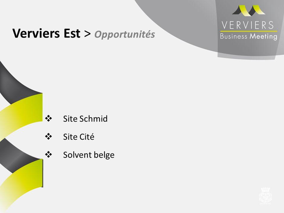 Site Schmid Site Cité Solvent belge Verviers Est > Opportunités