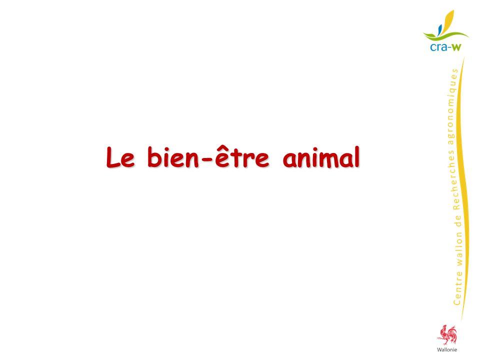 Directives 2001/88 et 2001/93 AR 15/5/2003 « protection des porcs dans les élevages » Le logement des truies Truies et cochettes en groupes surface (m²/animal) revêtement plein continu* (m²/animal) côtés de la loge (m) Largeur des ouvertures Largeur des pleins <20 mm>80 mm si caillebotis béton (mm) période (sem.) - Porcheries mises en service ou rénovées après le 1/1/2003 - Toutes au 1/1/2013