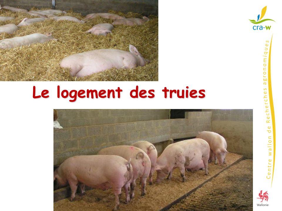 attache interdite Directives 2001/88 et 2001/93 AR 15/5/2003 « protection des porcs dans les élevages » Le logement des truies depuis 1/1/2006 matériaux manipulables : paille, foin, sciure… aliments : volumineux, riches en fibres énergétiques Truies taries et gestantes et cochettes - Porcheries mises en service ou rénovées après le 1/1/2003 - Toutes au 1/1/2013 depuis 15/05/2003 Truies et cochettes