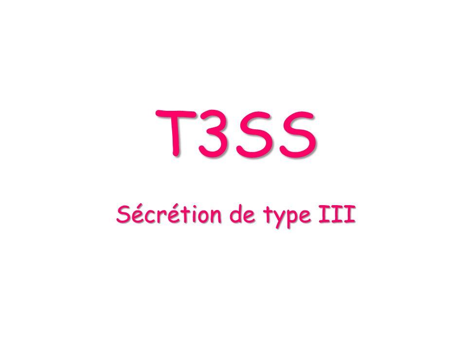 ¤ Effets du swapping sur la sécrétion des Yop : Sécrétion des Yop Coomassie stained SDS-PAGE La sécrétion des Yop est restaurée les T3S4 de AscP et PscP sont capables de jouer le rôle de YscP lintéraction entre le T3S4 et lappareil de sécrétion est spécifique