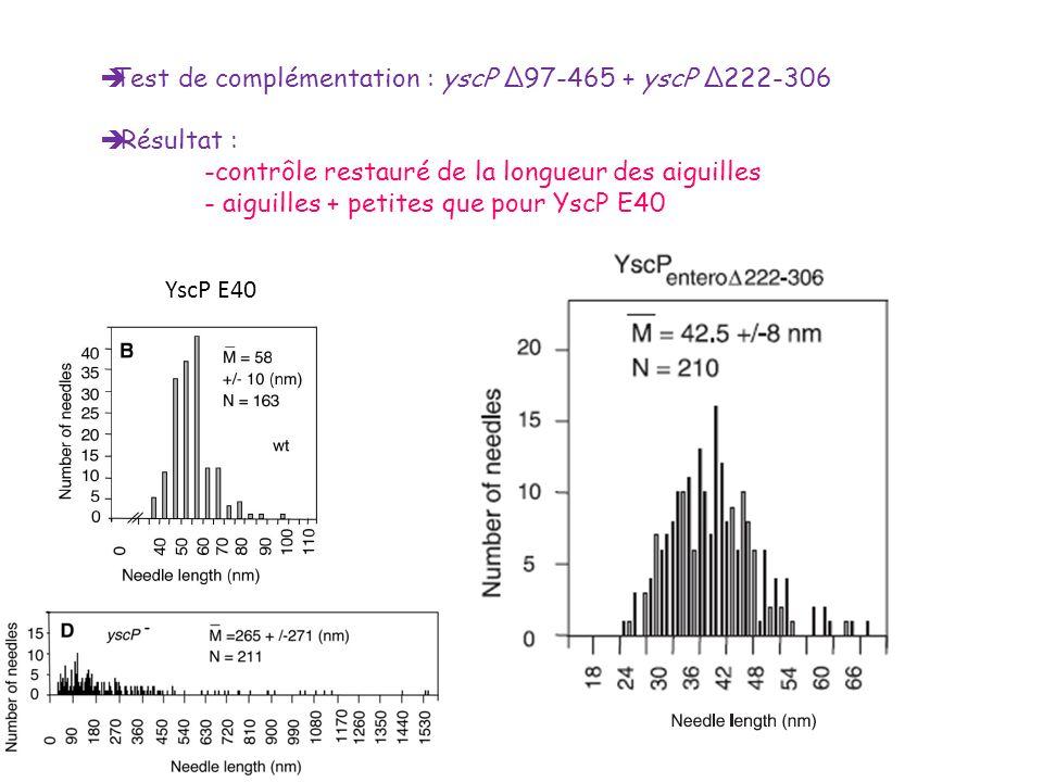 Test de complémentation : yscP Δ97-465 + yscP Δ222-306 Résultat : -contrôle restauré de la longueur des aiguilles - aiguilles + petites que pour YscP
