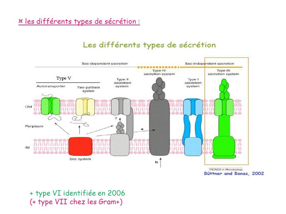 ¤ les différents types de sécrétion : + type VI identifiée en 2006 (+ type VII chez les Gram+)