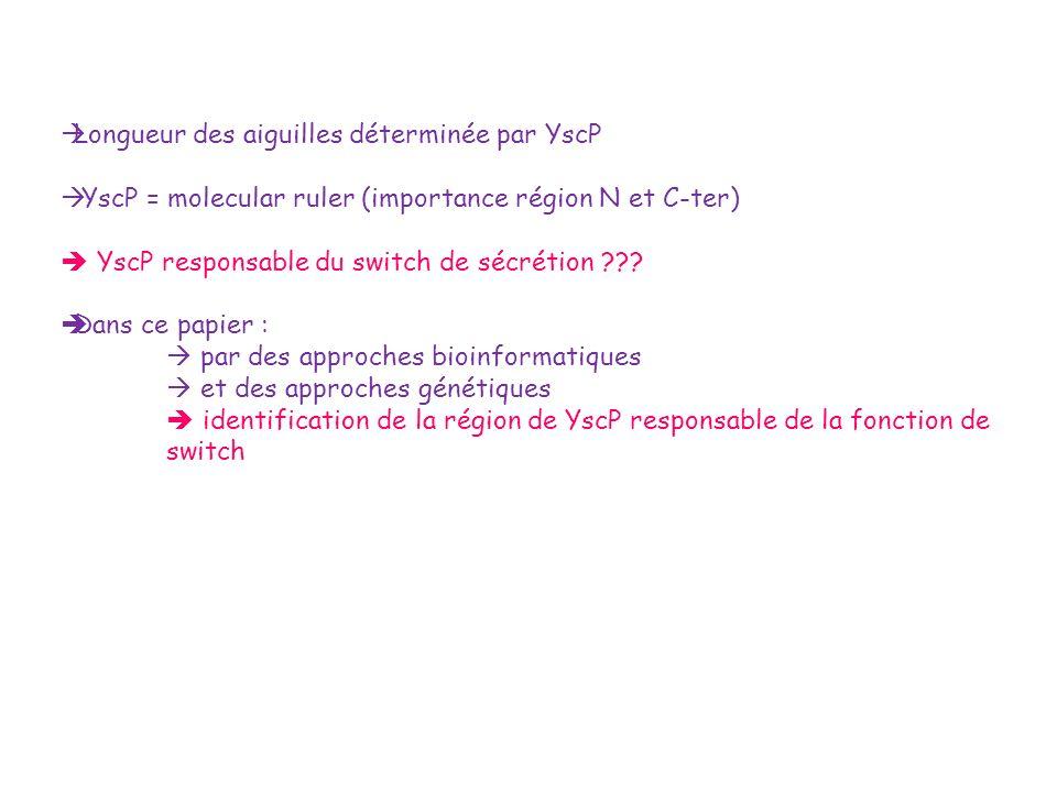 Longueur des aiguilles déterminée par YscP YscP = molecular ruler (importance région N et C-ter) YscP responsable du switch de sécrétion ??? Dans ce p