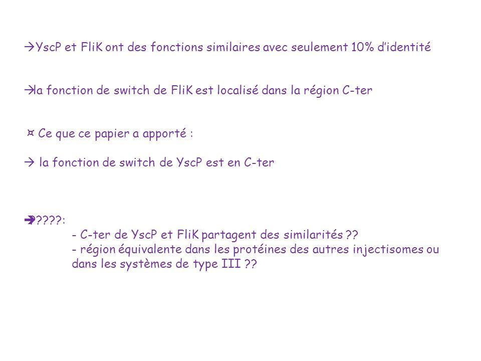 YscP et FliK ont des fonctions similaires avec seulement 10% didentité la fonction de switch de FliK est localisé dans la région C-ter ¤ Ce que ce pap