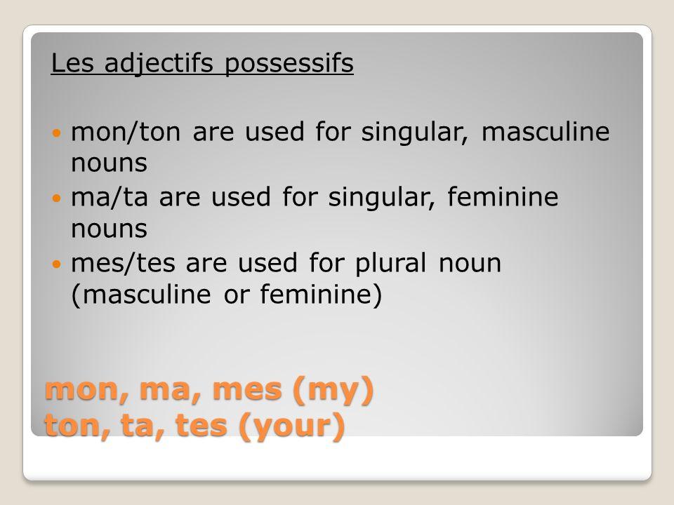 mon, ma, mes (my) ton, ta, tes (your) Les adjectifs possessifs Cest ton livre.