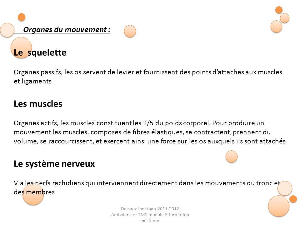 Delsaux Jonathan 2011-2012 Ambulancier TMS module 3 formation spécifique Fin… Position relax 30 °