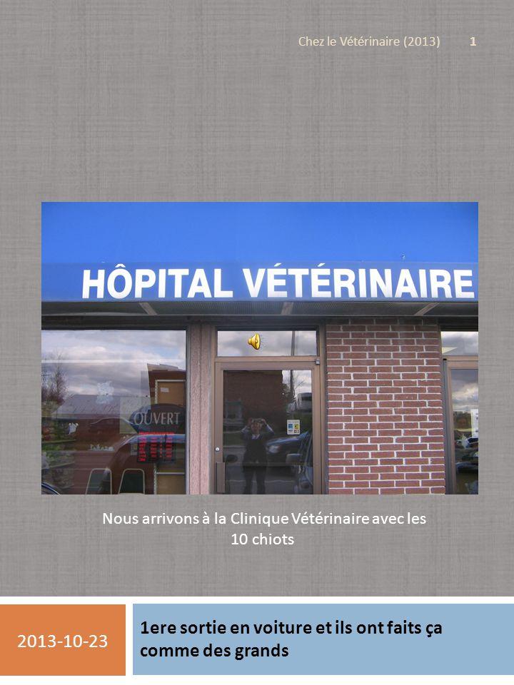 1ere sortie en voiture et ils ont faits ça comme des grands 2013-10-23 Chez le Vétérinaire (2013) 1 Nous arrivons à la Clinique Vétérinaire avec les 10 chiots