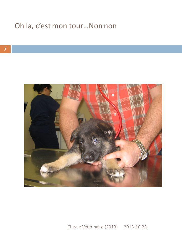 Oh la, cest mon tour…Non non 2013-10-23 Chez le Vétérinaire (2013) 7