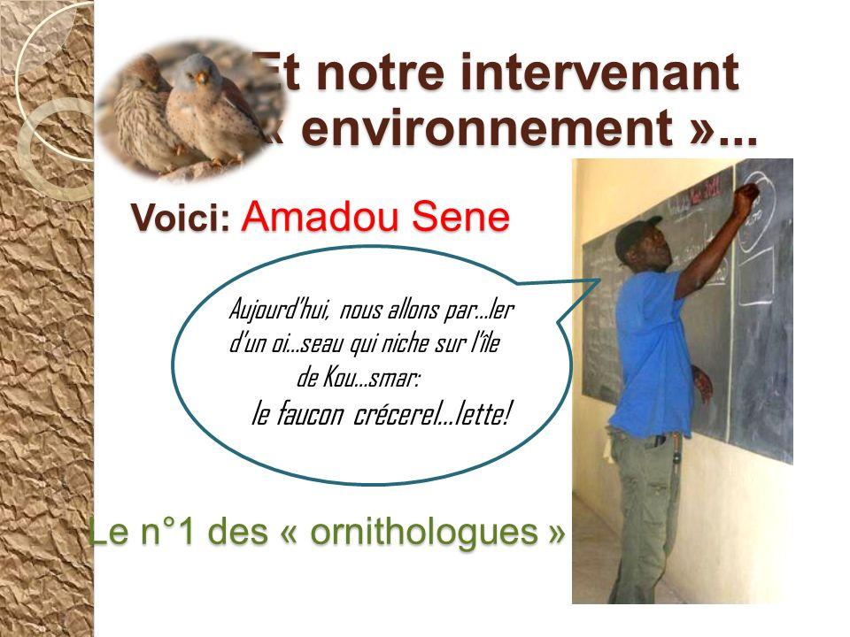 Voici: Amadou Sene Le n°1 des « ornithologues » Et notre intervenant Et notre intervenant « environnement »...