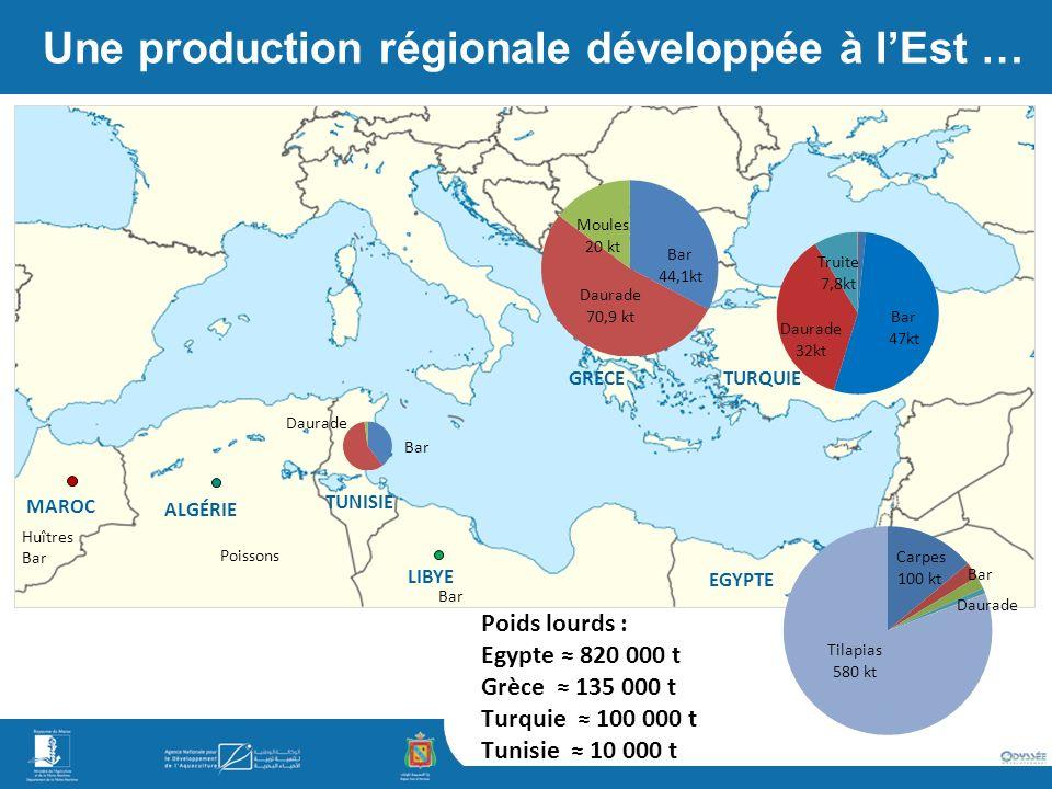Une production régionale développée à lEst … ALGÉRIE LIBYE TUNISIE MAROC Poissons Bar Huîtres Bar Daurade TURQUIE EGYPTE GRECE Poids lourds : Egypte 820 000 t Grèce 135 000 t Turquie 100 000 t Tunisie 10 000 t