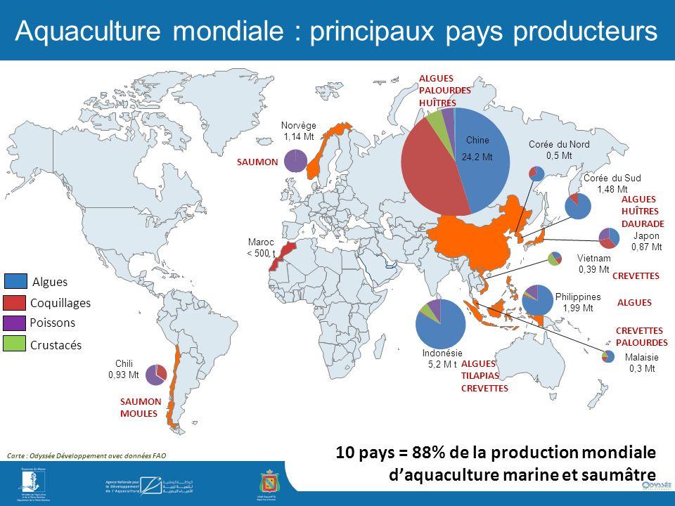 Aquaculture mondiale : principaux pays producteurs 10 pays = 88% de la production mondiale daquaculture marine et saumâtre Carte : Odyssée Développement avec données FAO Indonésie 5,2 M t Philippines 1,99 Mt Corée du Sud 1,48 Mt Norvège 1,14 Mt Chili 0,93 Mt Japon 0,87 Mt Corée du Nord 0,5 Mt Vietnam 0,39 Mt Malaisie 0,3 Mt Chine 24,2 Mt Algues Coquillages Poissons Crustacés SAUMON MOULES SAUMON ALGUES TILAPIAS CREVETTES ALGUES HUÎTRES DAURADE ALGUES PALOURDES HUÎTRES CREVETTES PALOURDES ALGUES Maroc < 500 t