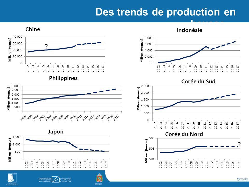 simaje Des trends de production en hausse… ? ?