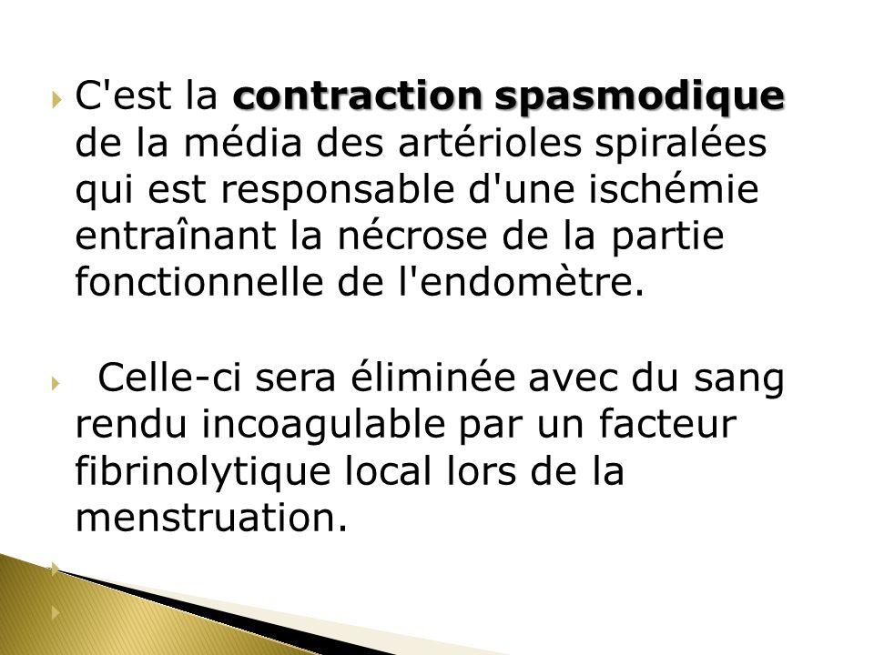 contraction spasmodique C'est la contraction spasmodique de la média des artérioles spiralées qui est responsable d'une ischémie entraînant la nécrose