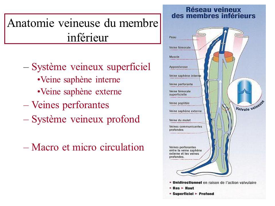 Anatomie veineuse du membre inférieur – Système veineux superficiel Veine saphène interne Veine saphène externe – Veines perforantes – Système veineux
