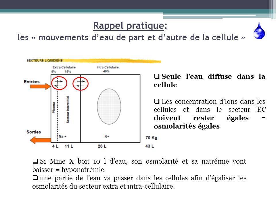 Rappel pratique: les « mouvements deau de part et dautre de la cellule » Seule leau diffuse dans la cellule Les concentration dions dans les cellules