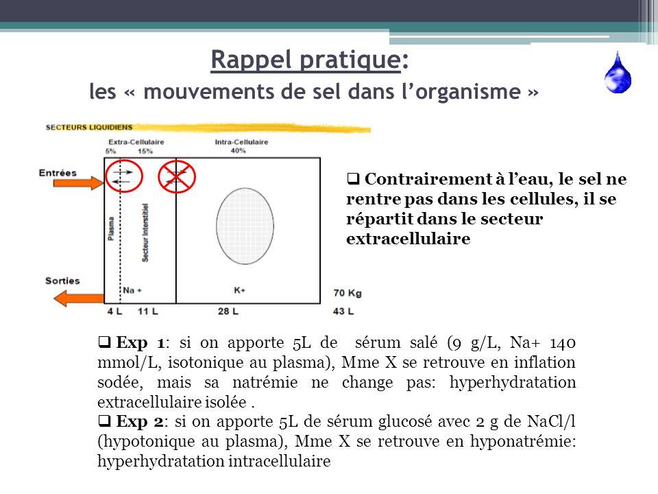 Rappel pratique: les « mouvements de sel dans lorganisme » Contrairement à leau, le sel ne rentre pas dans les cellules, il se répartit dans le secteu