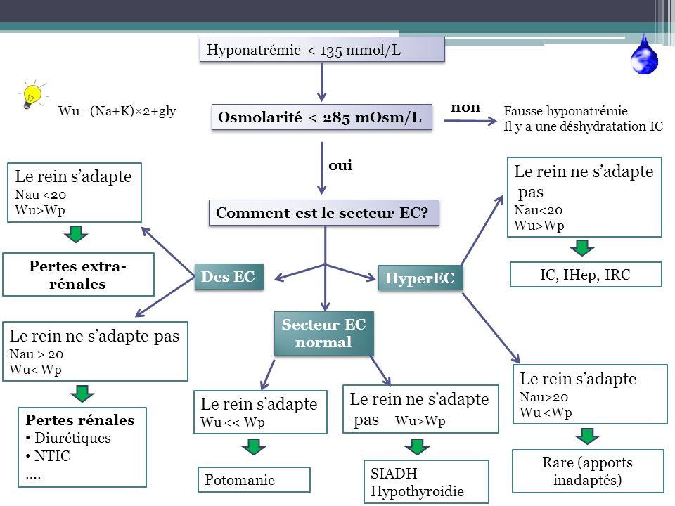 Hyponatrémie < 135 mmol/L Osmolarité < 285 mOsm/L Wu= (Na+K)×2+gly non Fausse hyponatrémie Il y a une déshydratation IC oui Comment est le secteur EC?