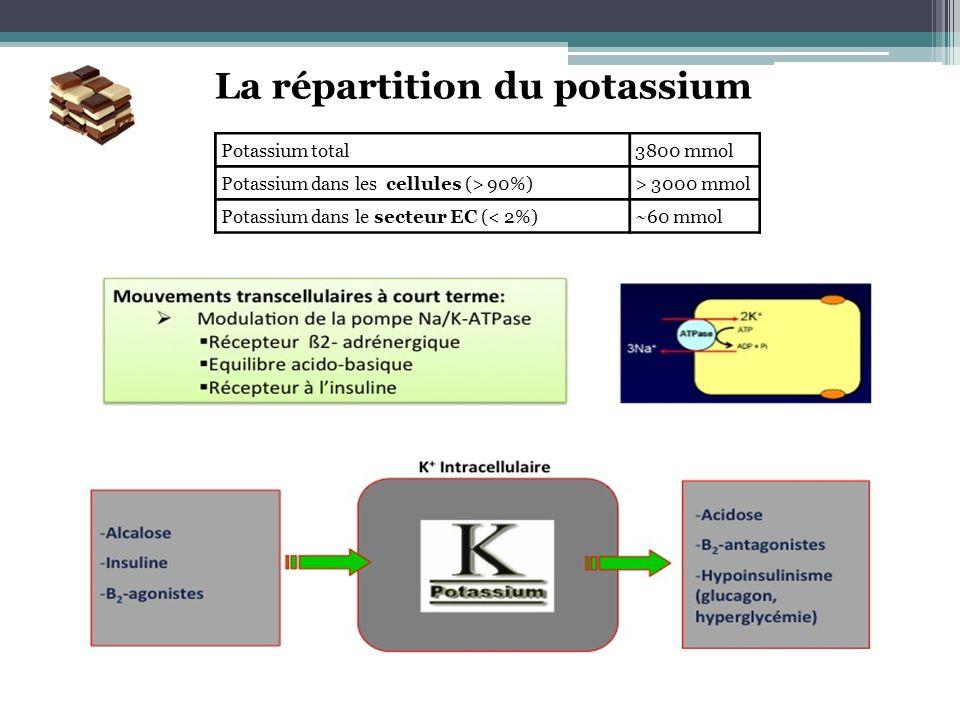 Potassium total3800 mmol Potassium dans les cellules (> 90%)> 3000 mmol Potassium dans le secteur EC (< 2%)~60 mmol La répartition du potassium