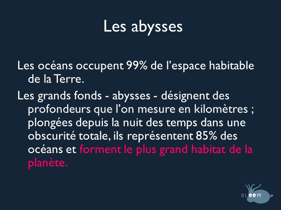 Les abysses Les océans occupent 99% de lespace habitable de la Terre. Les grands fonds - abysses - désignent des profondeurs que lon mesure en kilomèt