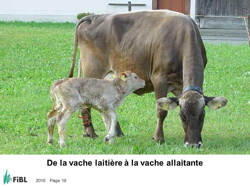 2010 Page 19 Bild: Von der Milchkuh zur Mutterkuh De la vache laitière à la vache allaitante