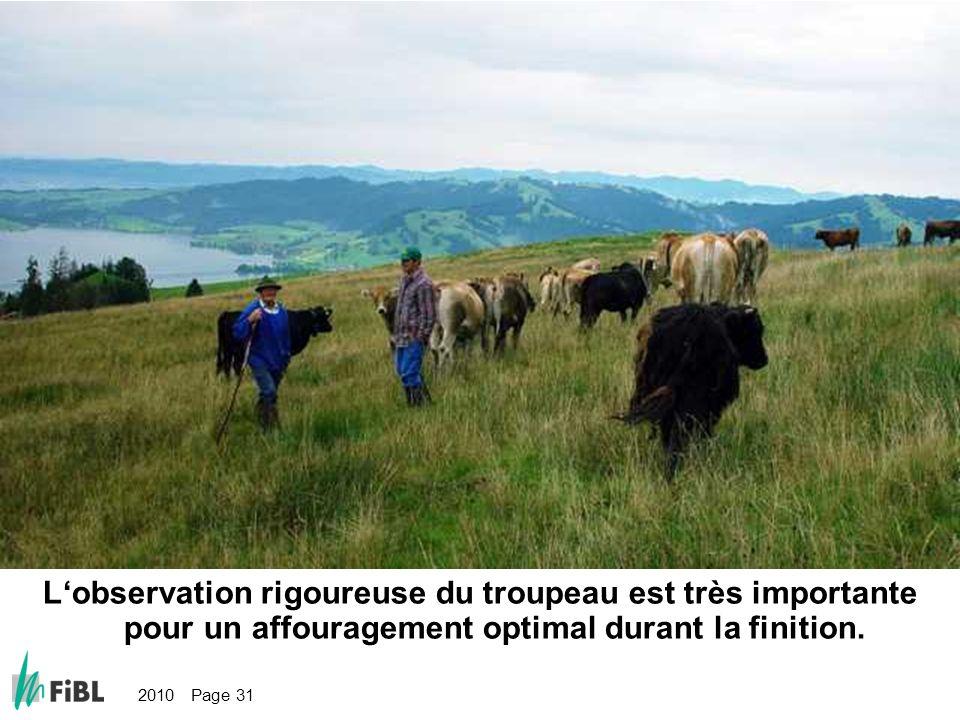2010 Page 31 Bild: Genaue Beobachtung der Herde ist für die optimale Endmastfütterung sehr wichtig Lobservation rigoureuse du troupeau est très import
