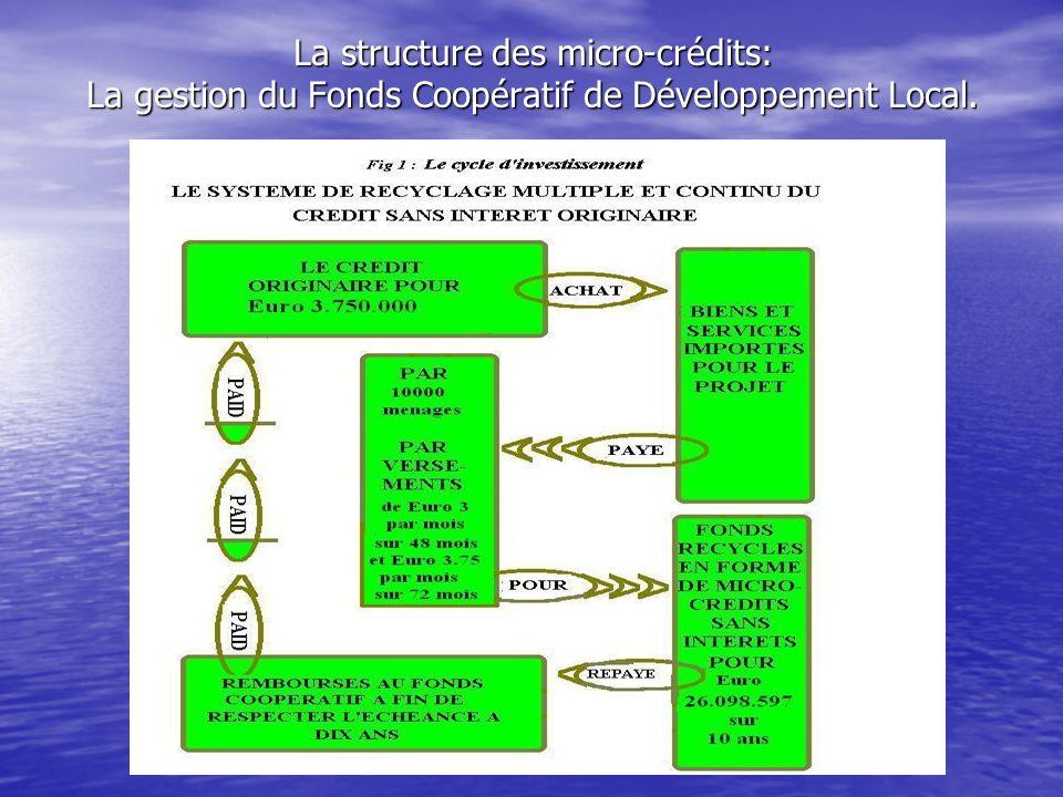 La structure des micro-crédits: La gestion du Fonds Coopératif de Développement Local.