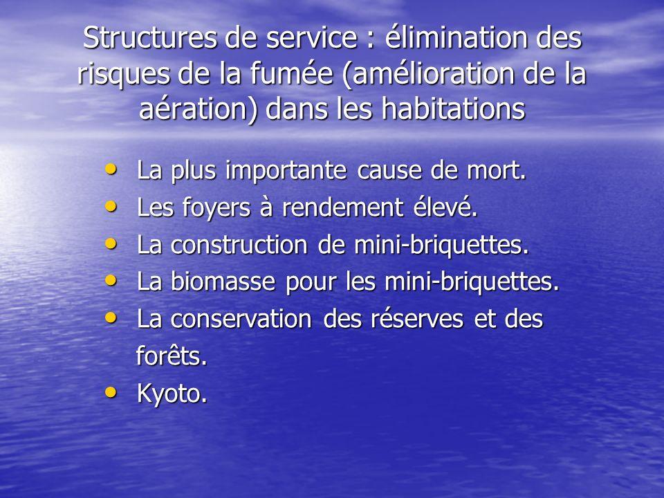 Structures de service : élimination des risques de la fumée (amélioration de la aération) dans les habitations La plus importante cause de mort. La pl