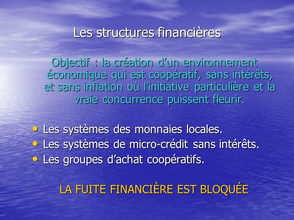 Les structures financières Objectif : la création dun environnement économique qui est coopératif, sans intérêts, et sans inflation où linitiative particulière et la vraie concurrence puissent fleurir.
