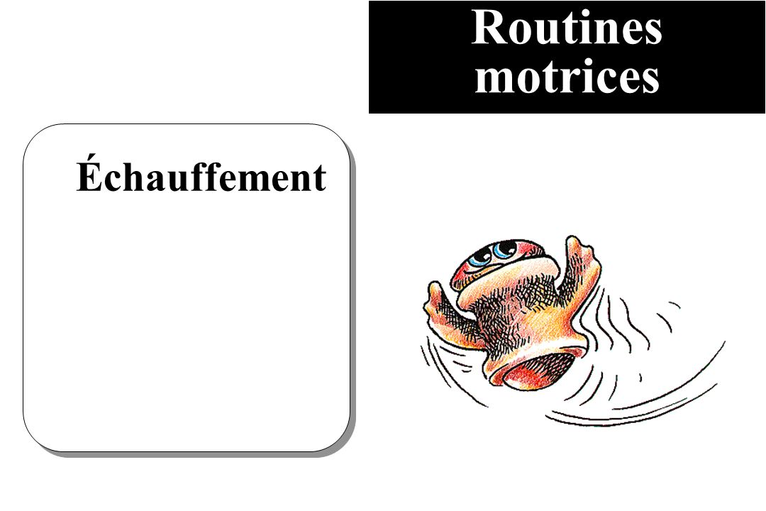 Routines motrices Échauffement