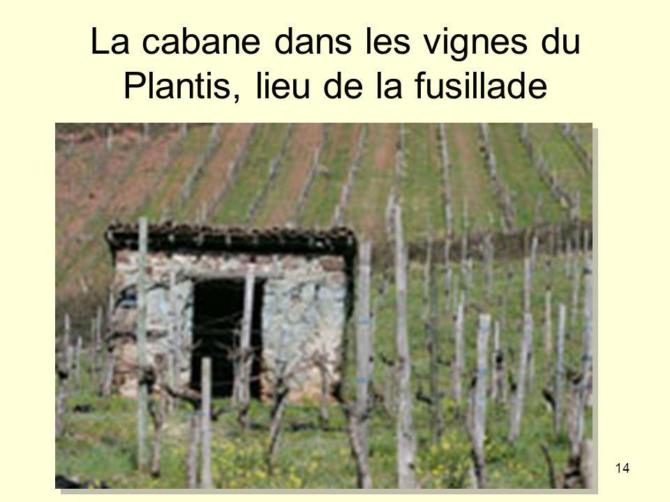 14 La cabane dans les vignes du Plantis, lieu de la fusillade