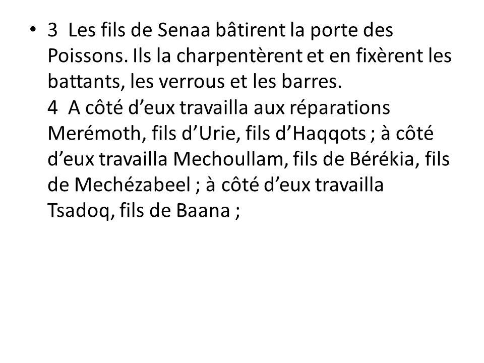 3 Les fils de Senaa bâtirent la porte des Poissons. Ils la charpentèrent et en fixèrent les battants, les verrous et les barres. 4 A côté deux travail