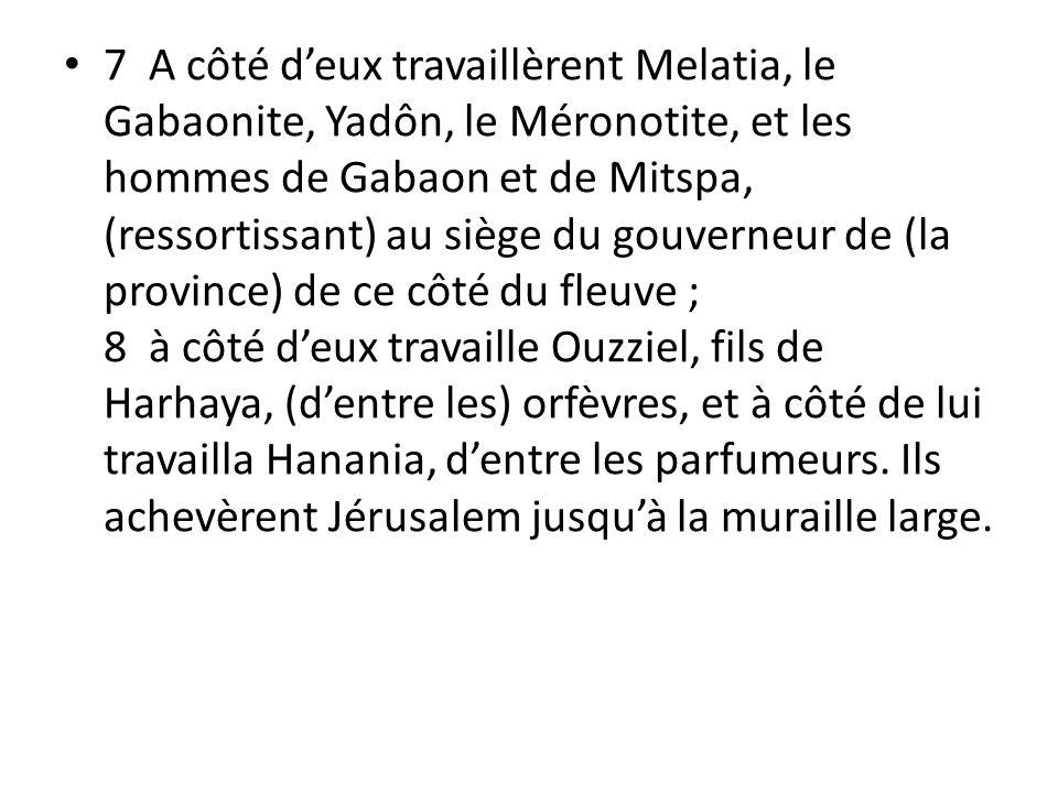 7 A côté deux travaillèrent Melatia, le Gabaonite, Yadôn, le Méronotite, et les hommes de Gabaon et de Mitspa, (ressortissant) au siège du gouverneur de (la province) de ce côté du fleuve ; 8 à côté deux travaille Ouzziel, fils de Harhaya, (dentre les) orfèvres, et à côté de lui travailla Hanania, dentre les parfumeurs.