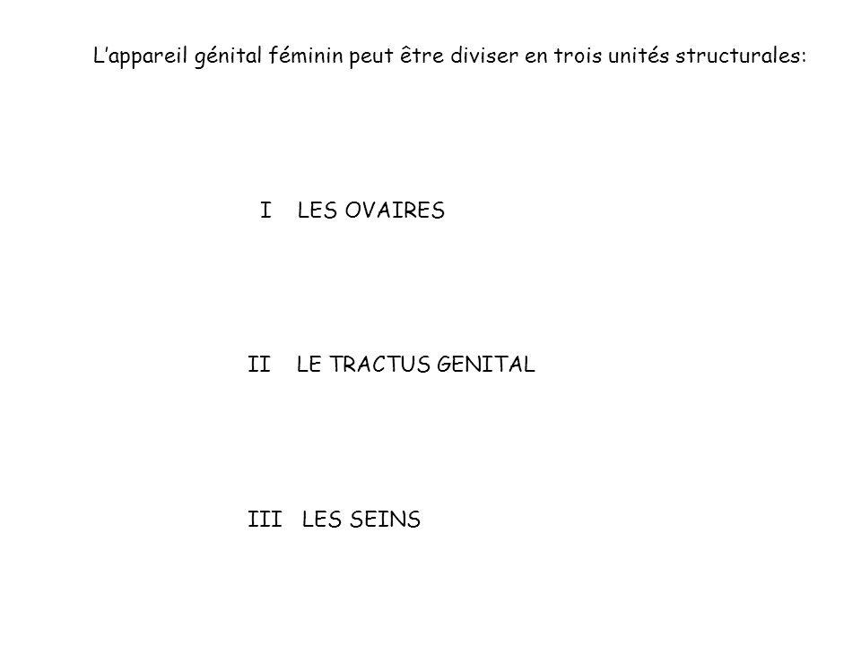 Lappareil génital féminin peut être diviser en trois unités structurales: I LES OVAIRES II LE TRACTUS GENITAL III LES SEINS